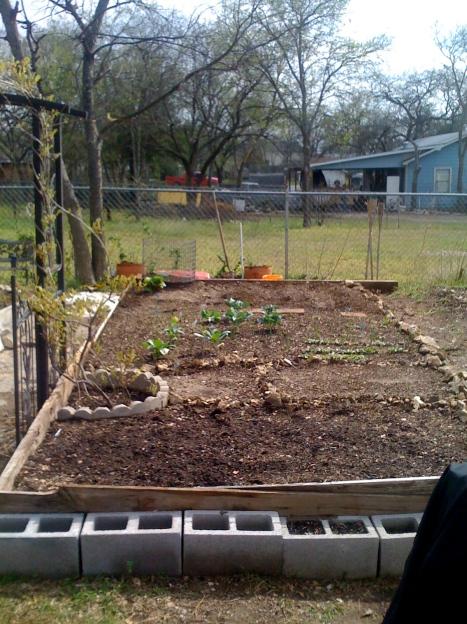garden-week-4