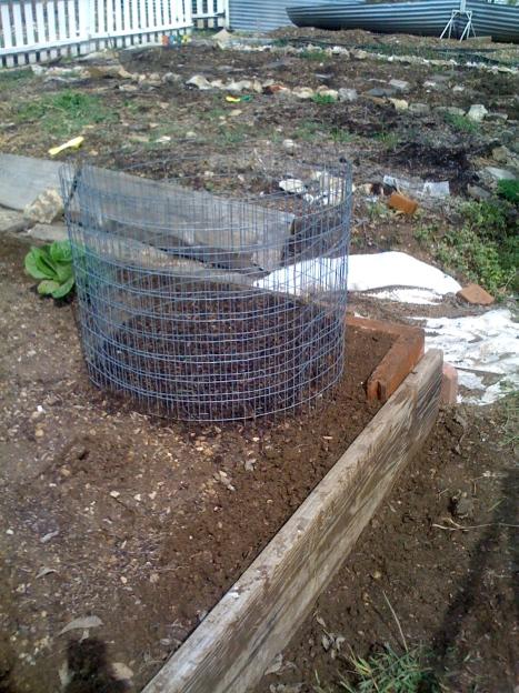 potato-cage